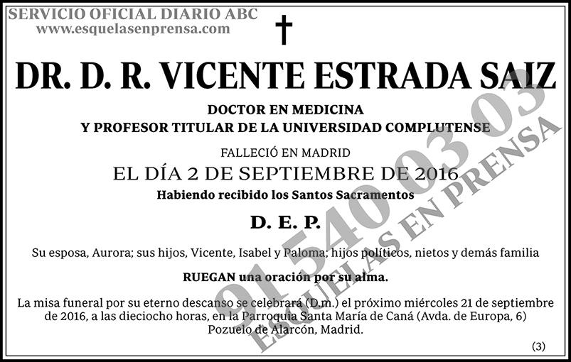 D. R. Vicente Estrada Saiz